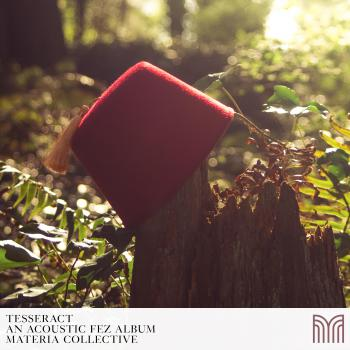 TESSERACT: An Acoustic FEZ Album. Untitled. Click to zoom.