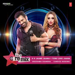 O O Jaane Jaana , Tenu Leke Jaana - The Remix From