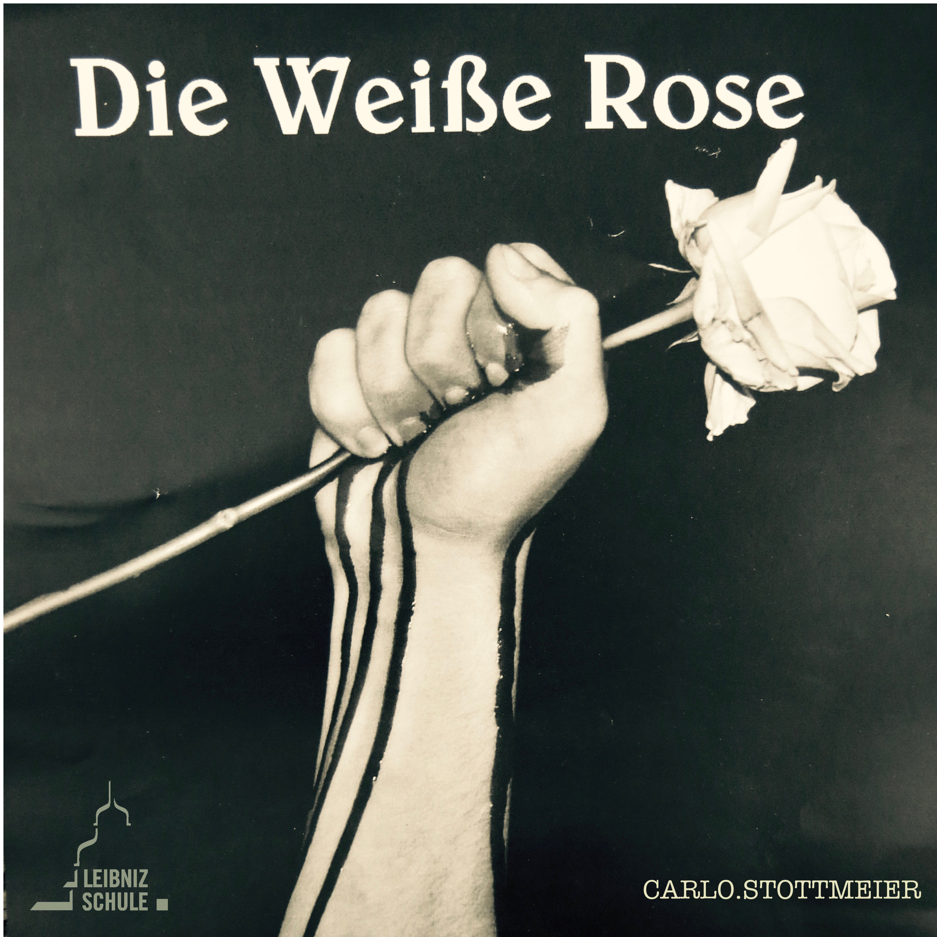 die weisse rose Die weiße rose (the white rose) is a 1982 ccc film production about the white rose resistance to the nazis led by university students in munich in 1942-1943 whose members were caught and executed in february 1943, shortly after the german capitulation at stalingrad.